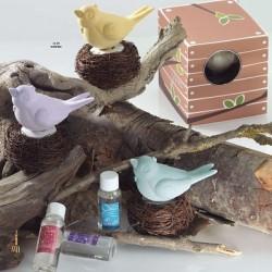 Pájaro nido con fragancia